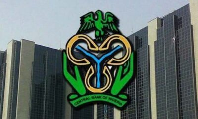 Central Bank of Nigeria Forex to Halt Maize Import