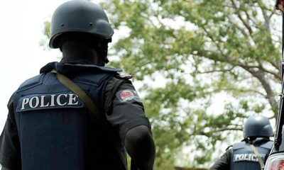 Borno State Police Command Bans Protest Over Fuel Price Hike