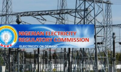 FG spent N540 Billion Naira on subsidy in 2019 — NERC