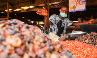 World Bank States that Nigeria's Inflation Rate Will Rise to 5th Highest in Sub-Saharan Africa