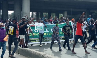 No protester, hoodlum arrested in Ogun on democracy day- Police